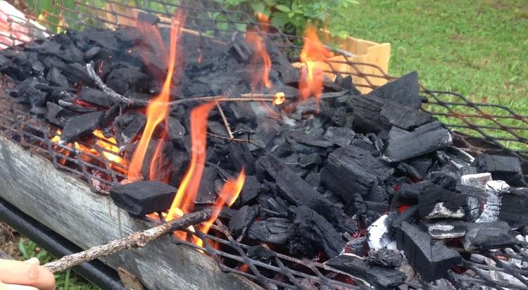 allumage barbecue technique charbon sur grille grilladeur. Black Bedroom Furniture Sets. Home Design Ideas